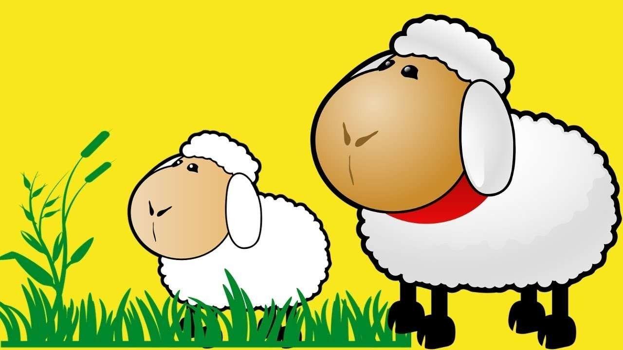صورة صور عيد الاضحا , الاضحية خروف العيد