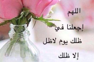 صورة صور مال صباح الخير , صباح الحاجات الحلوة