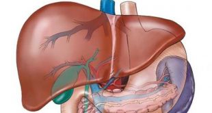 احترس عند الشعور بهذه الاعراض , علامات التهاب الكبد