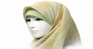 الحجاب في المنام للحامل