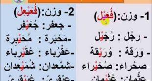 درس التصغير في اللغة العربية , اسهل درس تصغير في اللغة العربية